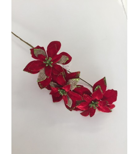 Spray Poinsettia