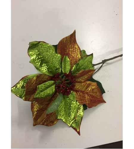 Poinsettia Green & Red