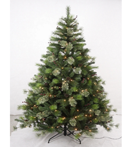 2.1 Meter SHEERWOOD CASHMERE TREE
