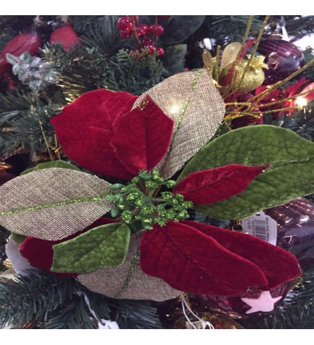 Poinsettia Red / Lime